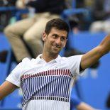 Прогноз и ставки на игру Джокович – Янг (теннис), котировки букмекеров